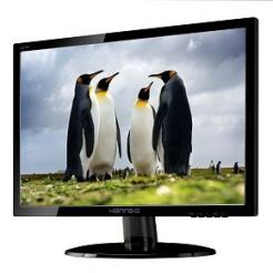 "HANNS.G HE195ANB Монитор 18.5""W  LED,1366x768,90/65,D-Sub, Audio, Anti-Glare"